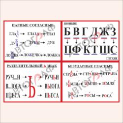 Русский язык № 03 размер 300х210мм 4шт